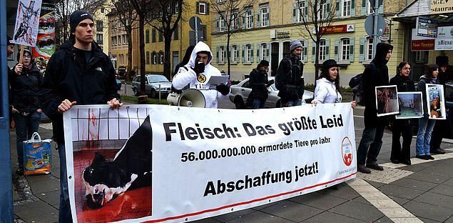 Demomarathon Bad Cannstatt - Esslingen - Stuttgart